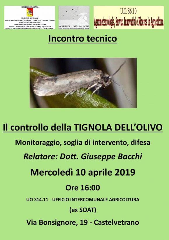 Asprol Selinunte: Incontro Tecnico Tignola dell'olivo 10 aprile