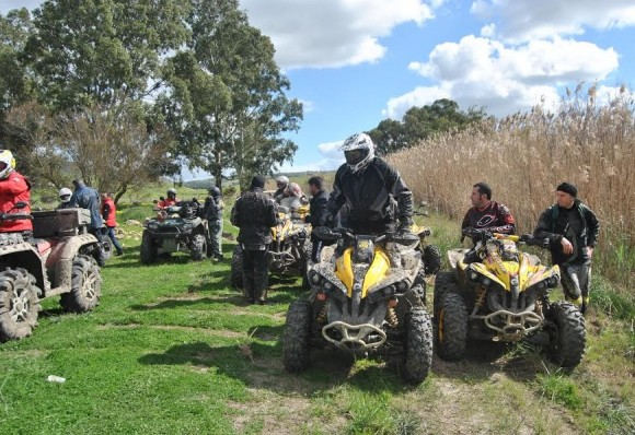 Country Life Day 2014 2