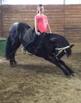 silvia-equitazione