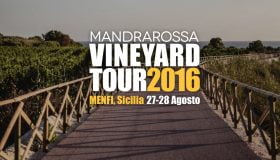 Vineyard Tour 2016