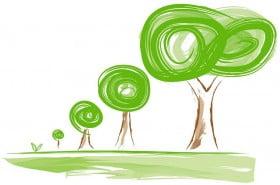 albero per ogni bambino