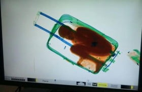bambini in valigia