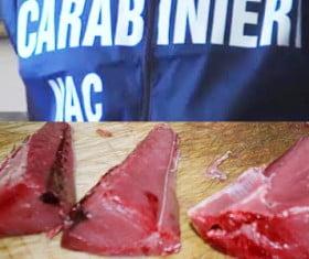 carabinieri-nac-tonno-rosso