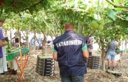 carabinieri tutela lavoro