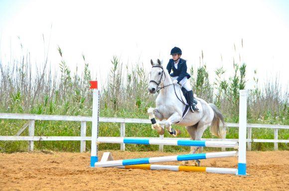 centro equus castelvetrano 1
