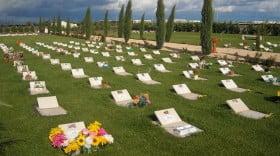 """in foto, il """"Parco dei Ricordi""""  Cimitero per Animali d'Affezione di Foggia"""