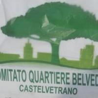 comitato quartiere belvedere