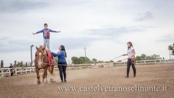 equus-cimarosa-2015-6014