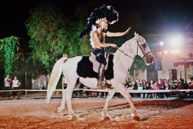 equus cimarosa