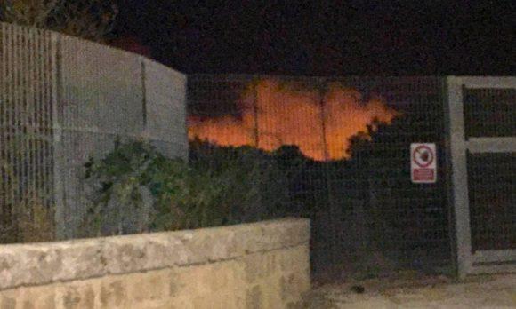 incendio parco selinunte
