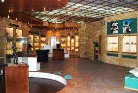 museo castelvetrano