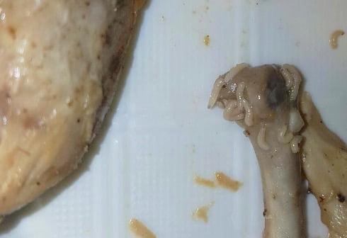 pollo arrosto vermi