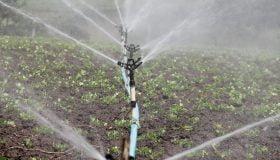 prezzo acqua sicilia