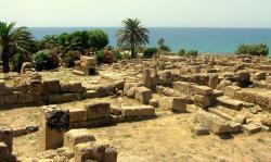 Acropoli di Selinunte (foto di Alberto Chiulli)